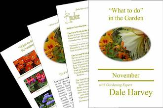 """""""What to do"""" in the Garden for November"""
