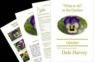 """""""What to do"""" in the Garden for October"""