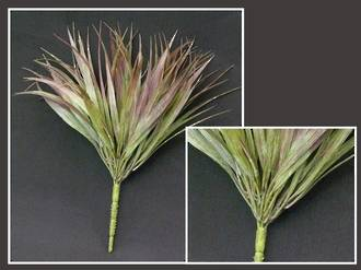 Grass – Purple Mondo Grass