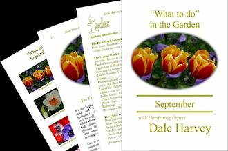 """""""What to do"""" in the Garden for September"""