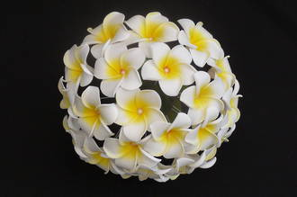 White & Yellow Frangipani Posy with Pearl Centres