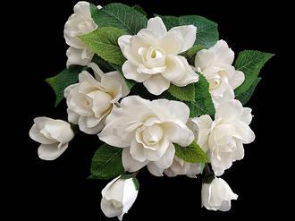 Gardenia Bunch - White