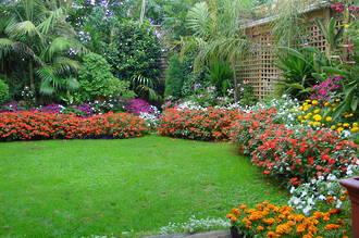 Greening Up Lawns
