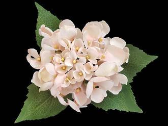 Hydrangea – Light Pink