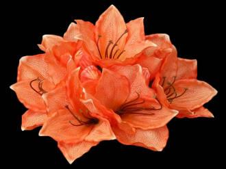 Amaryllis Bunch – Light Orange