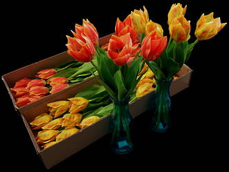 Tulips Bunches - Artificial