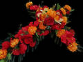 Red & Orange Floral Cross