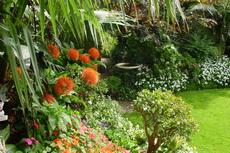 Flower Gardens 06-230x153