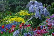 Flower Gardens 07-230x153