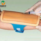 Forearm Venipuncture Training Model