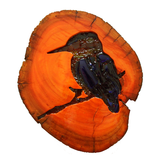 Red Gum Kōtare  (Kingfisher)
