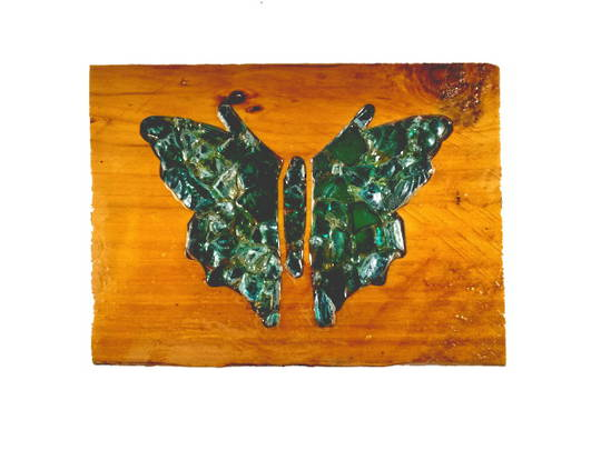 Macrocarpa Green Butterfly