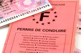 Traduction de permis de conduire