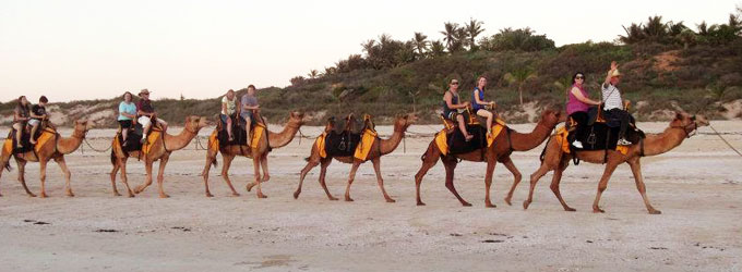 Broome-Camels