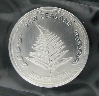 1 ounce silver fern coins 10 pack