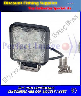 Perfect Image 15 watt LED Floodlight