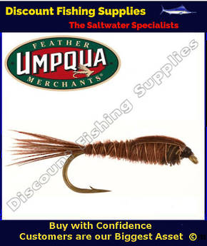 Umpqua Pheasant Tail Weighted #14 Fly