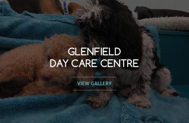a-glenfield
