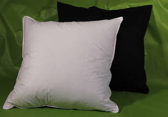 50/50 Euro Pillow