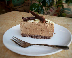 slice of mocha ice cream cake-893-115