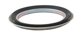 RB25 40 4: 25X40X4MM Oil Seal Gama