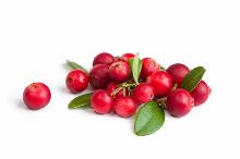 Cranberry-137