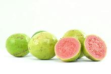 Guava-345