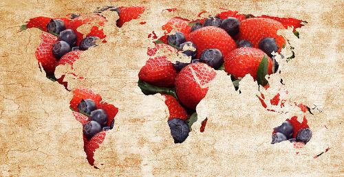 World Map Berries