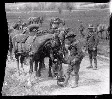 Soldier feeding his horse