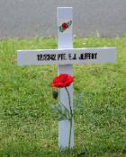 White Cross and poppy
