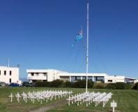 Royal NZ Air Force