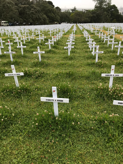 Crosses in long grass - last day of the display