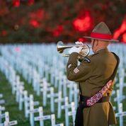 Bugler in front of field of 18,277 crosses