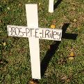 Student's cross