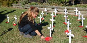 Girl placing poppy by a cross.
