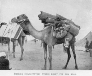 Camel acting as Brigade Headquarters ready for the road