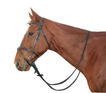 Saddlecraft Hanoverian II Bridle