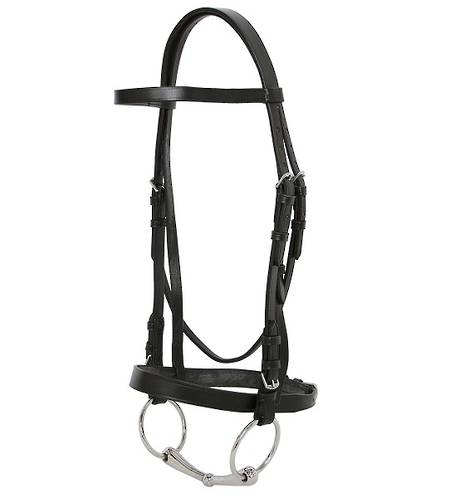 Blue Tag Cavesson Bridle