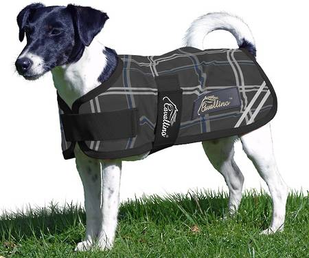 Cavallino Badminton Dog Coat