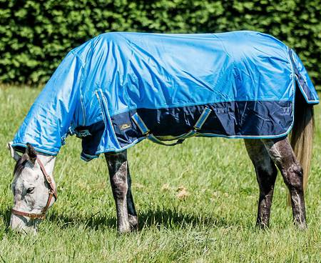 Cavallino Westminster Turnout Combo - 300gm