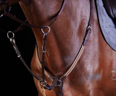 Collegiate Elastic Event Breastplate