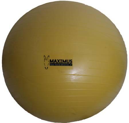 Arion Maximus Power Play Ball