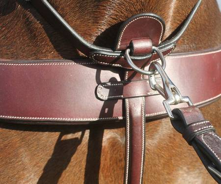 Hinterland Ultimaate Martingale