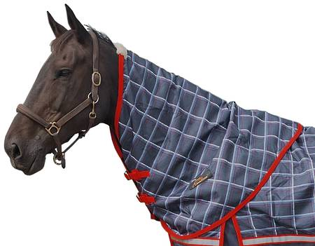 Cavallino Yorkshire Turnout  Neck Rug No Fill