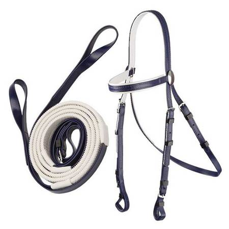 Zilco Stainless Steel Race Bridle & Loop Rein Set