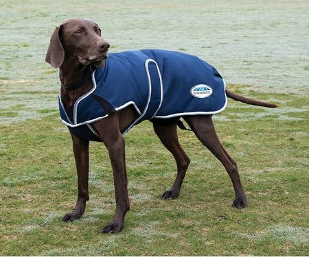 Weatherbeeta Comfitec Premier Parka Deluxe Dog Coat