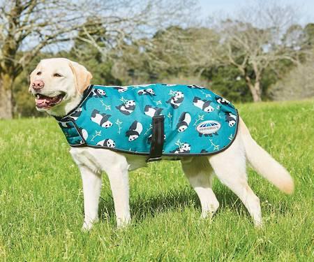 Weatherbeeta Comfitec Premier Parka Dog Coat