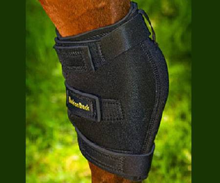 Back On Track Standard Hock Boot