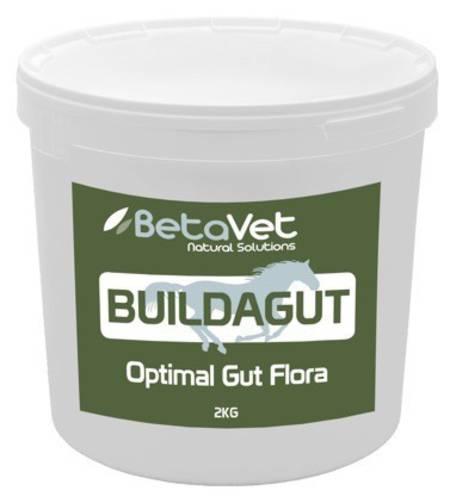 BetaVet BuildaGut