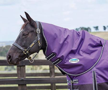 Weatherbeeta Comfitec Plus Dynamic II Neck Rug - Medium/Lite